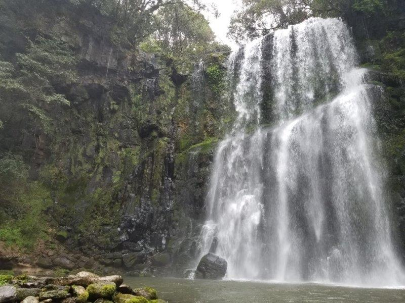 桜滝の水瀑