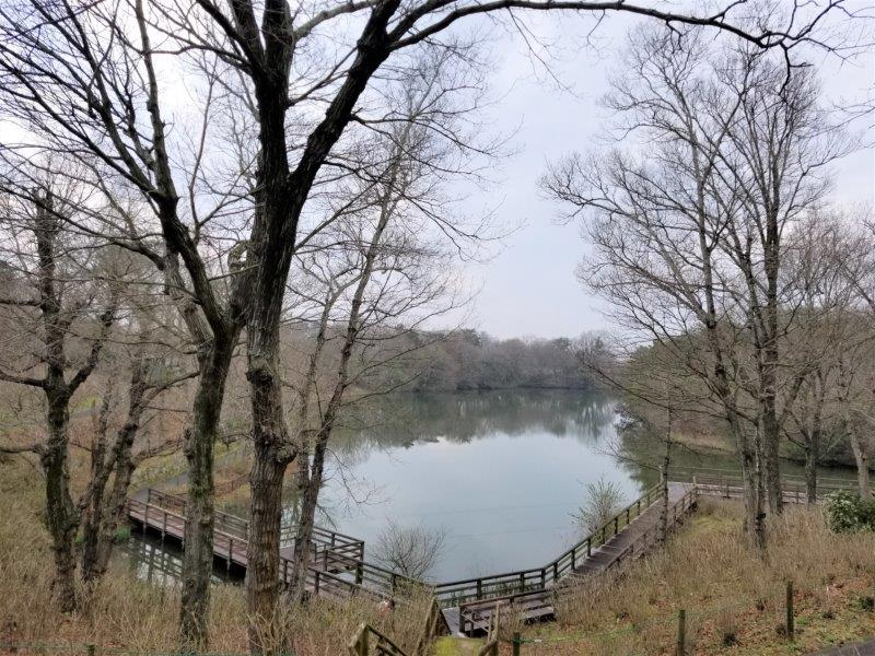 国営まんのう公園の飛竜池