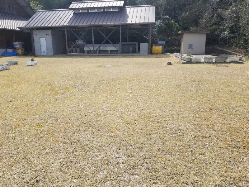 小豆島オートビレッジYOSHIDA(フリーサイトの4番サイト)