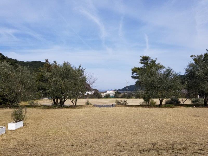 小豆島オートビレッジYOSHIDA(フリーサイトの9番サイト)