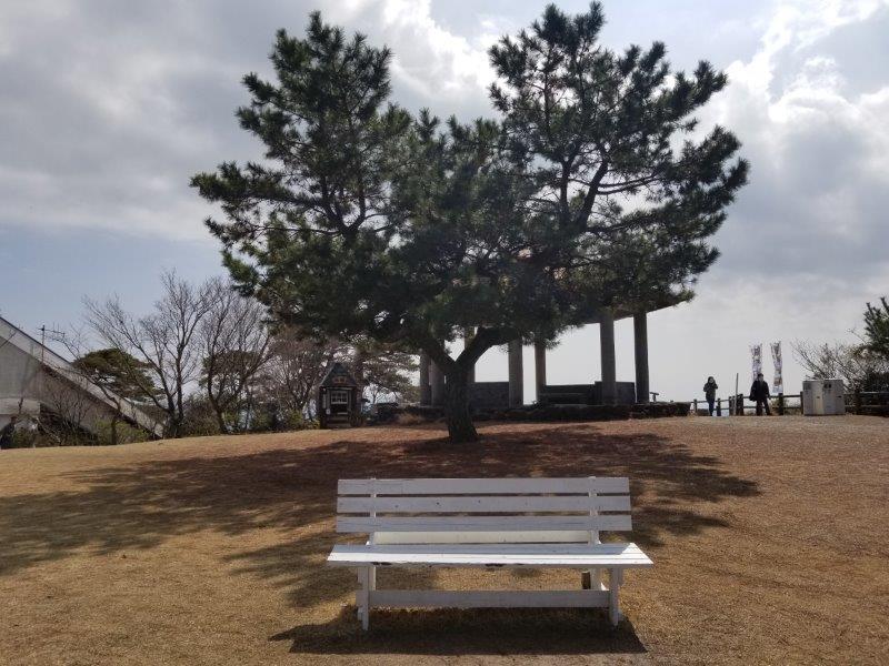 寒霞渓のハートと木とベンチ
