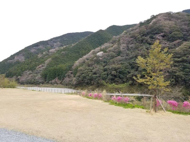 スノーピークおち仁淀川(DサイトのD-4)