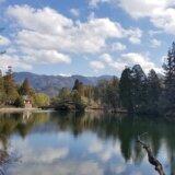 池の山キャンプ場(福岡県)-細かすぎるキャンプ場レポ