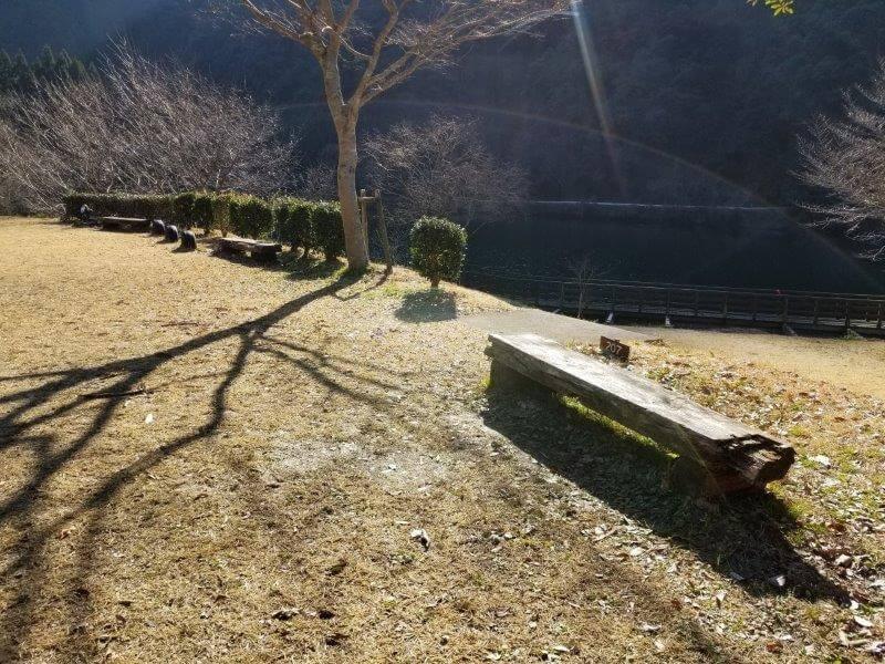 グリーンパル日向神峡 林間広場 207番