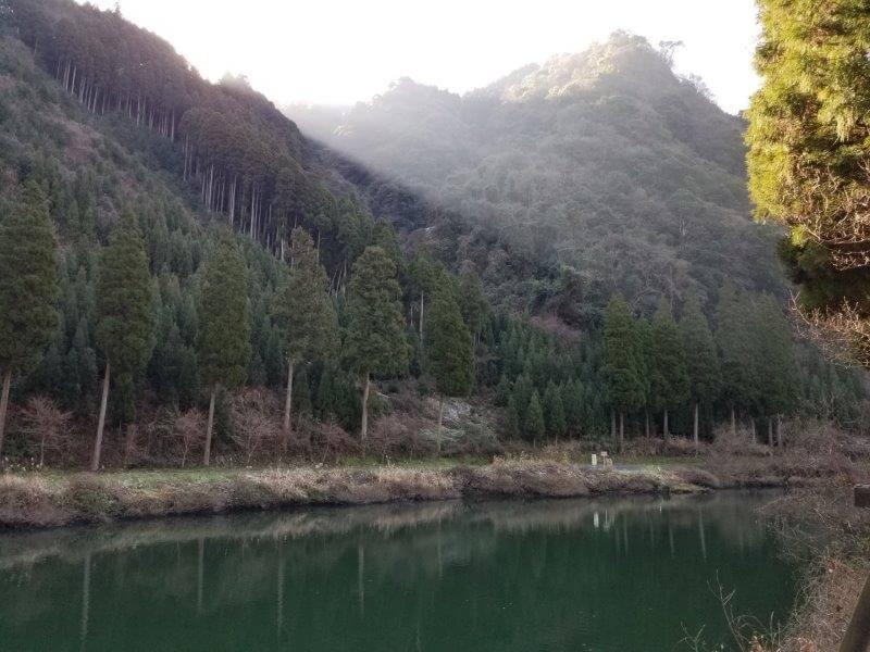 グリーンパル日向神峡 ダムの景色