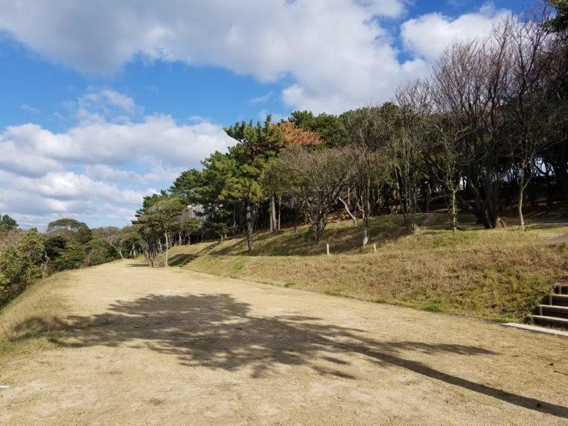 波戸岬キャンプ場フリーサイトは3段に分かれている