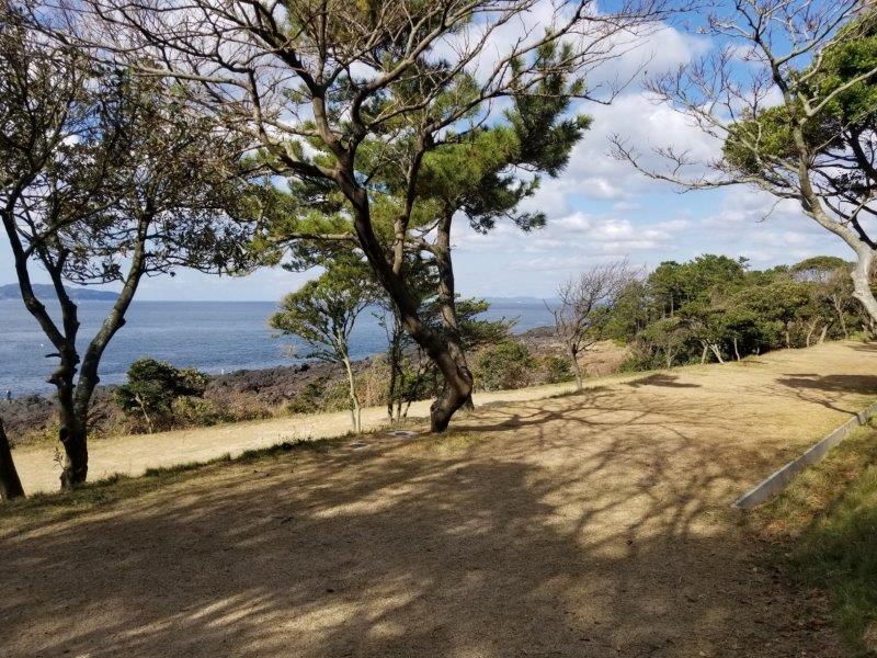 波戸岬キャンプ場フリーサイトの中段エリア