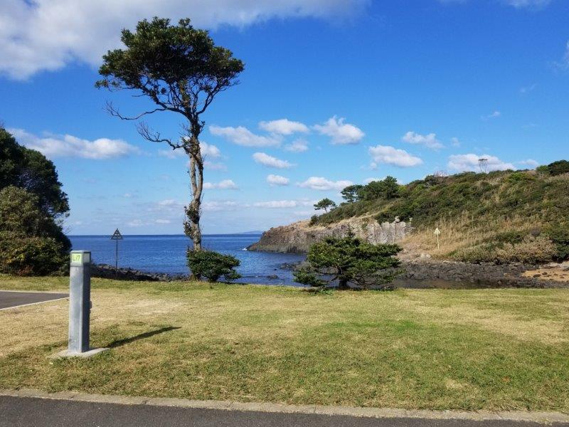 波戸岬キャンプ場オートサイトL17サイト