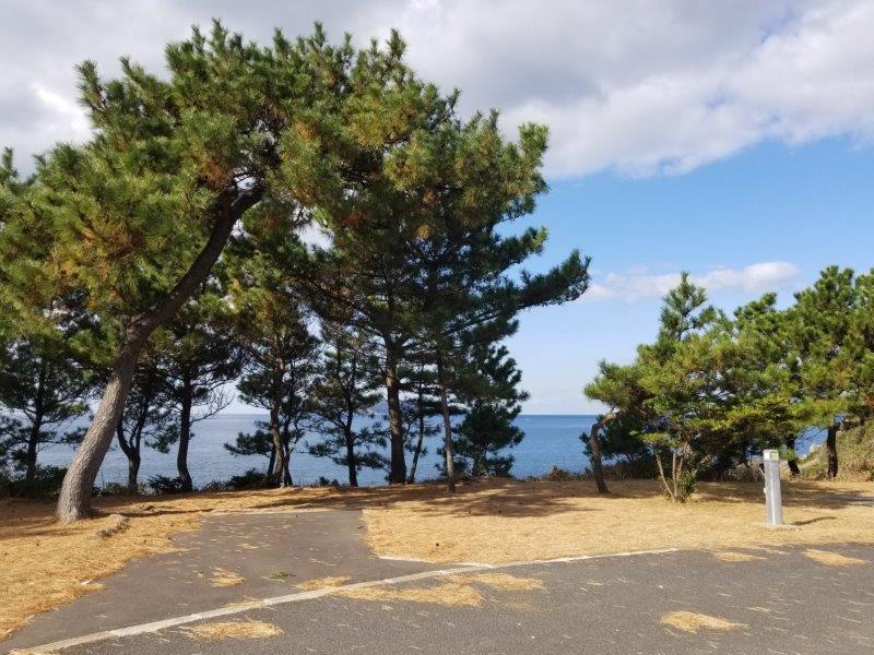 波戸岬キャンプ場オートサイトL3