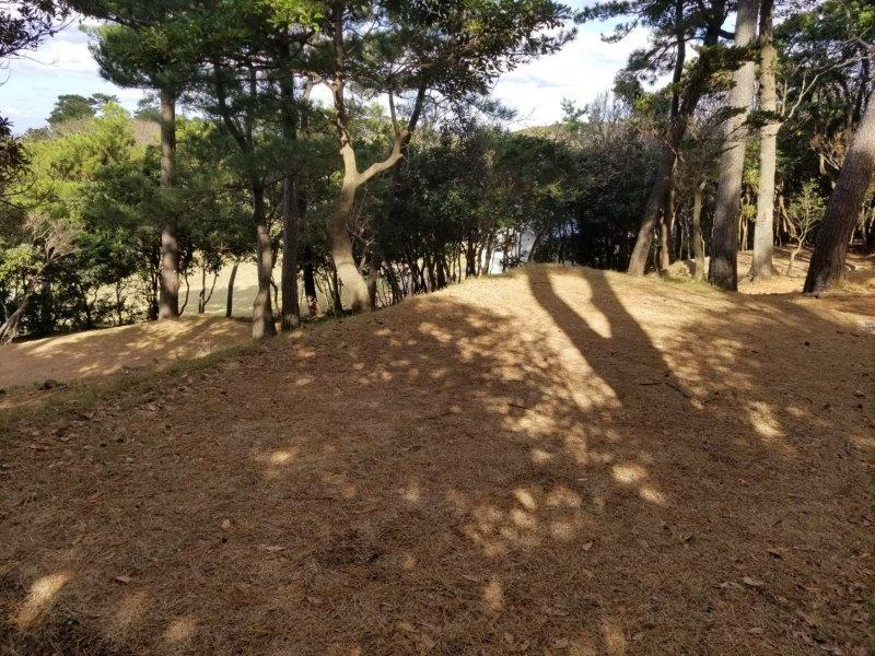 波戸岬キャンプ場一般サイトL2