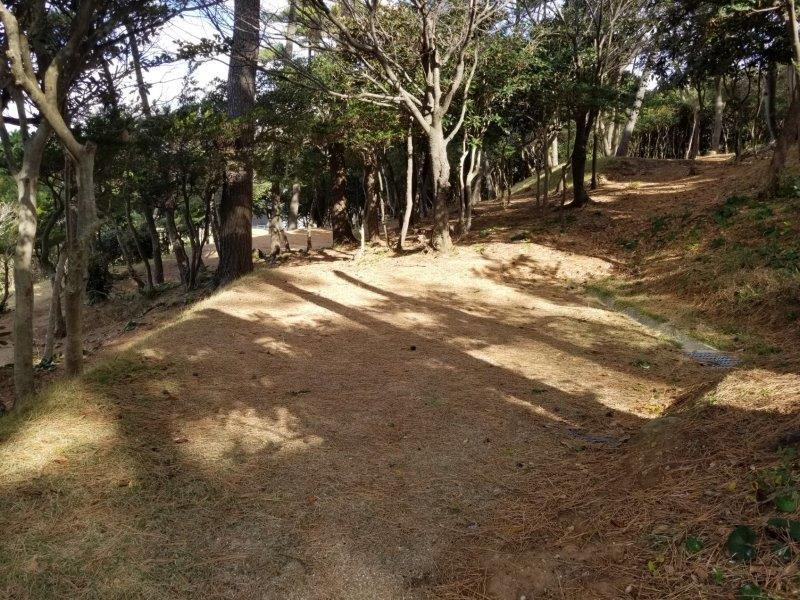 波戸岬キャンプ場一般サイトL5