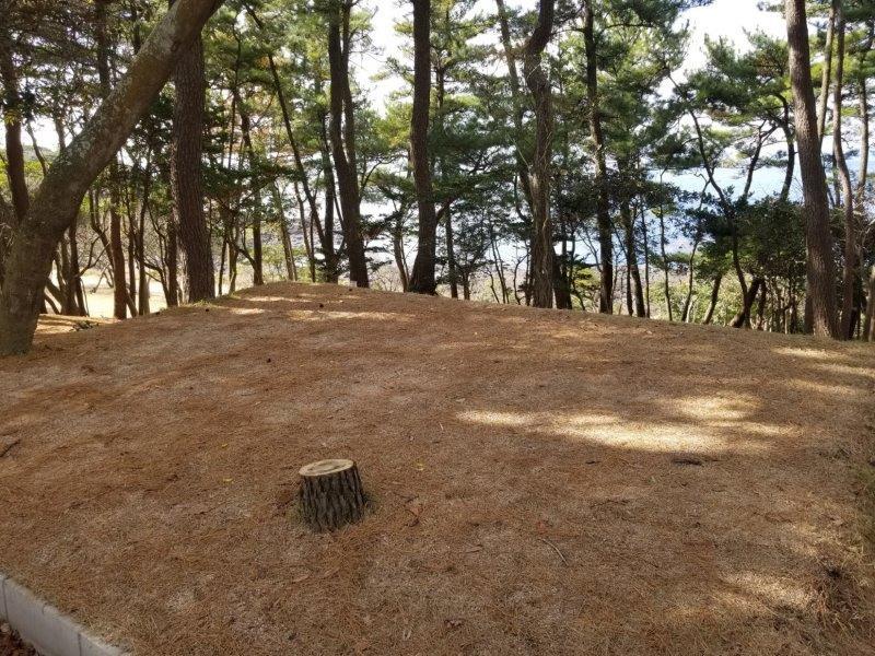 波戸岬キャンプ場一般サイトL6