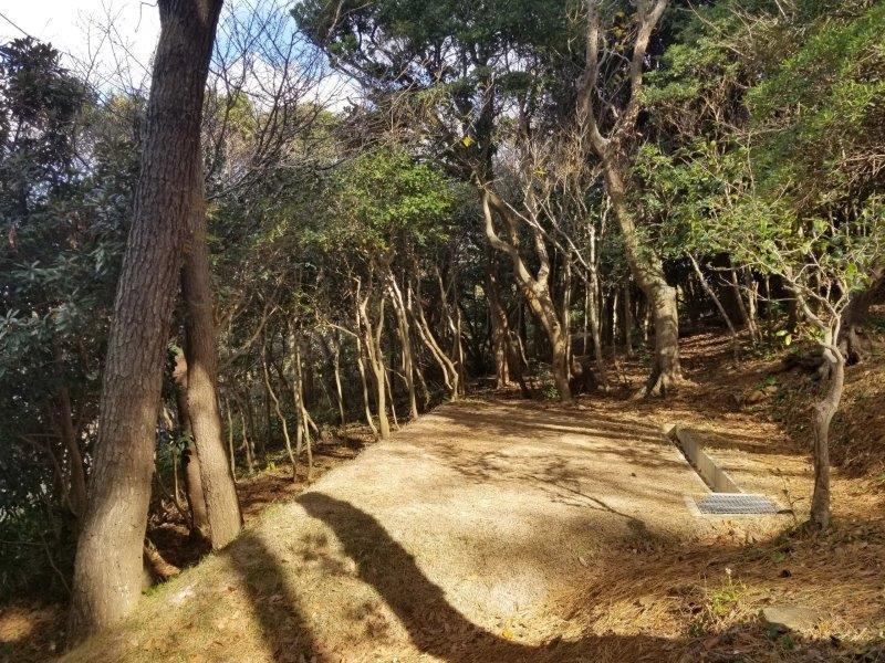 波戸岬キャンプ場一般サイトM1