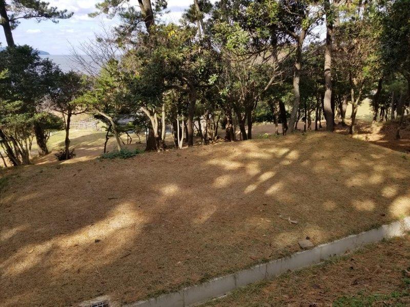 波戸岬キャンプ場一般サイトM3