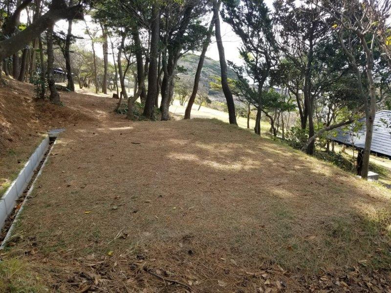 波戸岬キャンプ場一般サイトM5