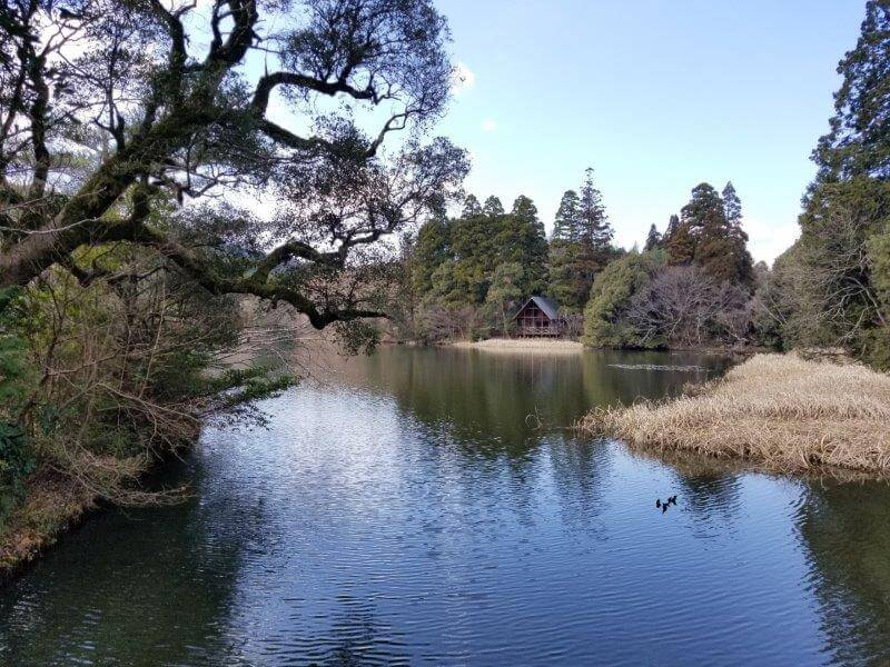 池の山キャンプ場 麻生池