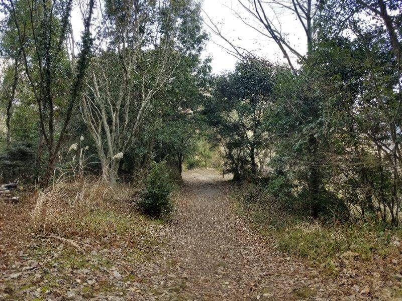 池の山キャンプ場 忠霊塔の奥にあるサイトへとつづく道