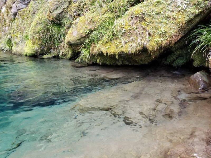 にこ淵の水面
