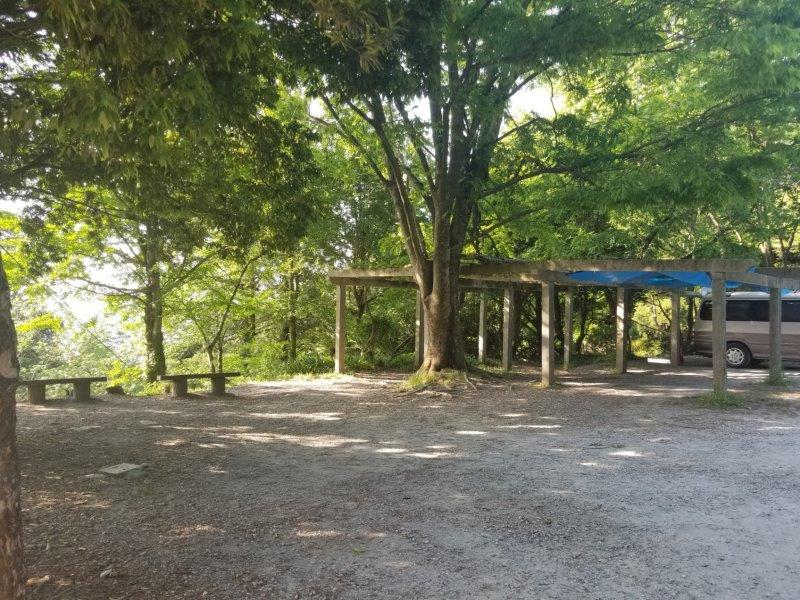 若杉楽園キャンプ場の藤棚
