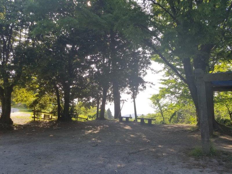 若杉楽園キャンプ場の日陰エリア