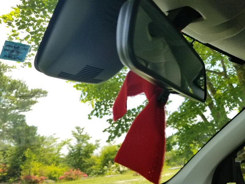 ゴンドーシャロレーで受付すると赤い印を車に付ける