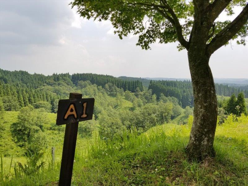 蔵迫温泉さくらキャンプ場阿蘇側のA1サイトからの景色