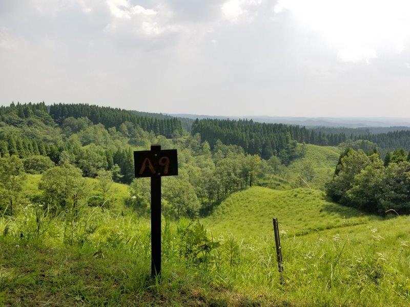 蔵迫温泉さくらキャンプ場阿蘇側のA9サイトからの景色