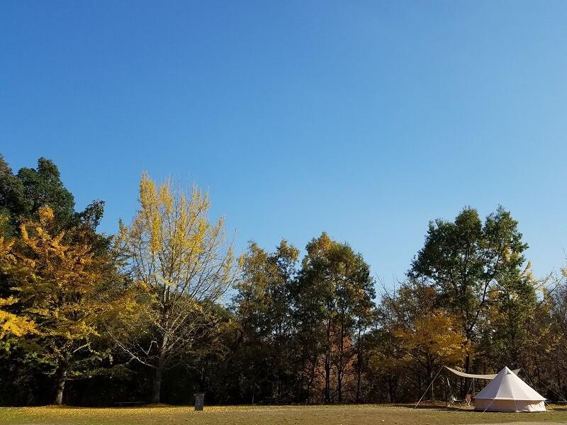 バルンバルンの森 フリーサイトでキャンプ