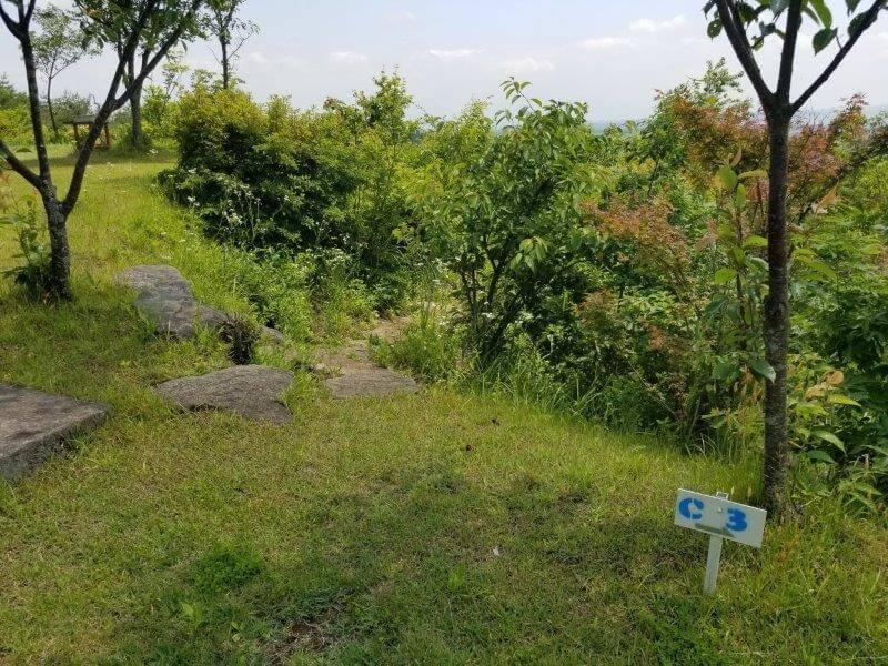ゴンドーシャロレー CサイトからDサイトへ降りる石段