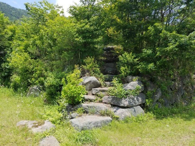 ゴンドーシャロレー DサイトからCサイトへ上がる石段
