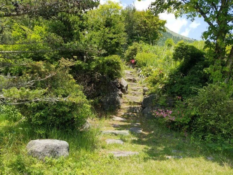 ゴンドーシャロレー EサイトからDサイトに上がる石段