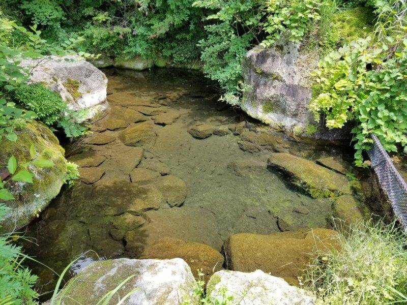 ゴンドーシャロレー 別荘エリア 3サイトにある池