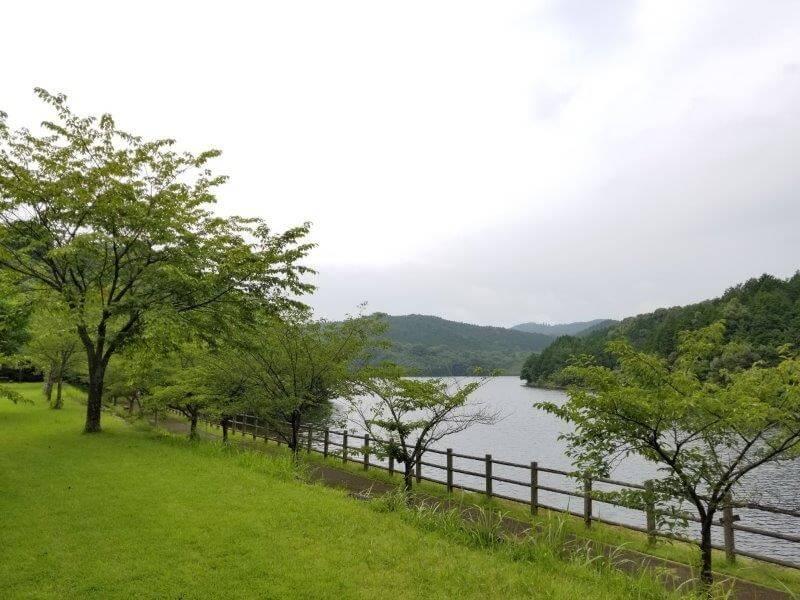 伊佐ノ浦公園キャンプサイト 最奥の湖畔エリア