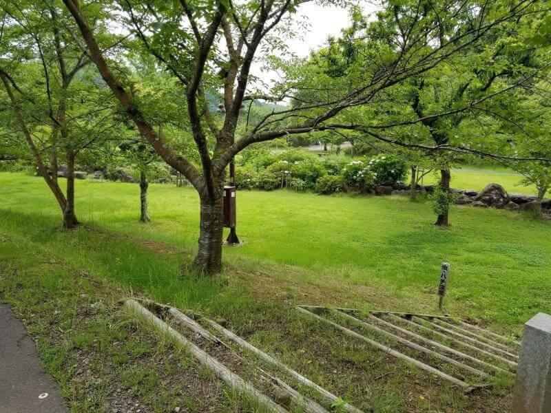 伊佐ノ浦公園キャンプサイト 緑のエリア