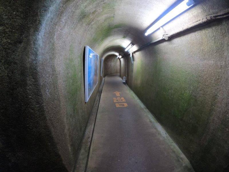 七ツ釜鍾乳洞の出口