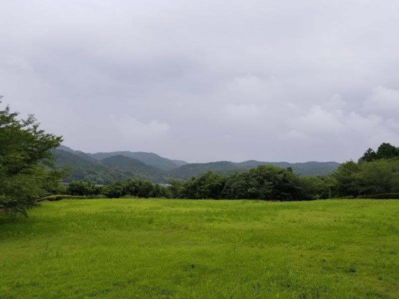 伊佐ノ浦公園の芝生広場