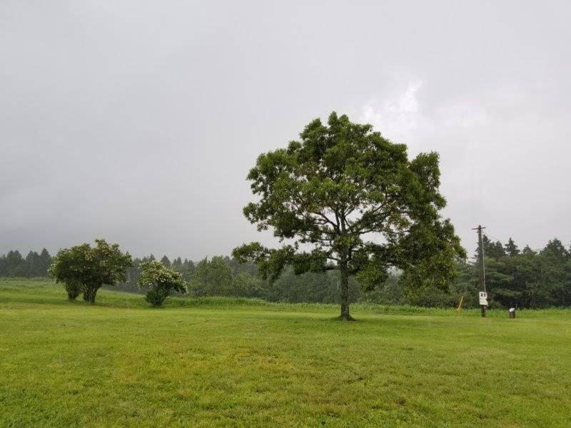 久住高原オートビレッジ:キャンプ日記 フリーサイトで場所選び