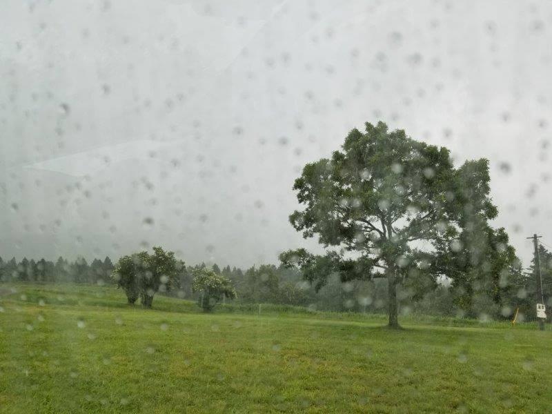 久住高原オートビレッジ:キャンプ日記 大雨が降り出す