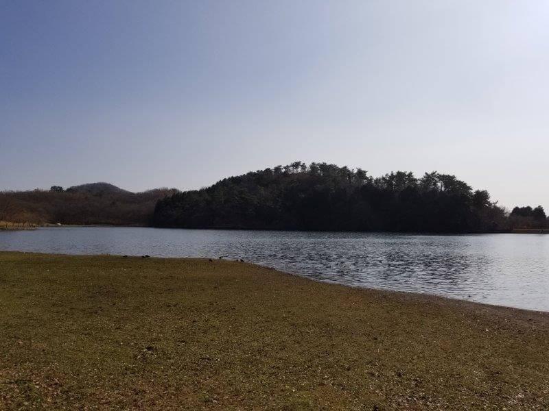 志高湖キャンプ場 湖畔沿いのテントサイト