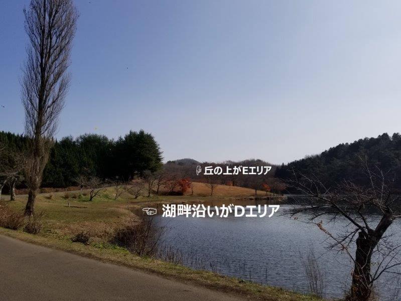 志高湖キャンプ場 湖畔沿いのテントサイト紹介