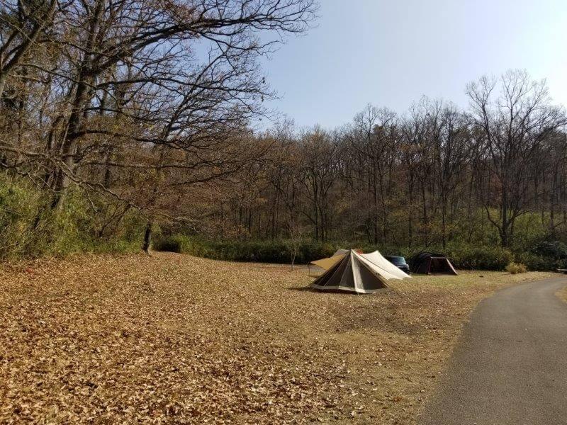 志高湖キャンプ場 1番奥のテントサイト