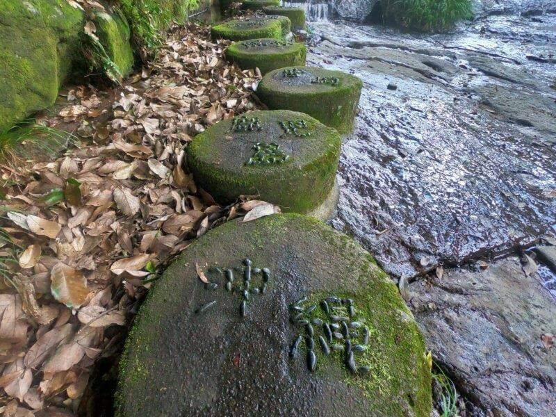 久住高原オートビレッジ:キャンプ日記 遊水峡 飛び石階段