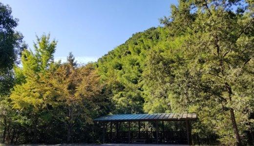 夢たちばなビレッジ(福岡)-細かすぎるキャンプ場レポ