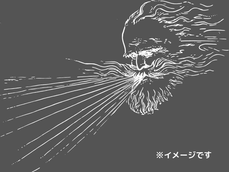 強風(イメージです)