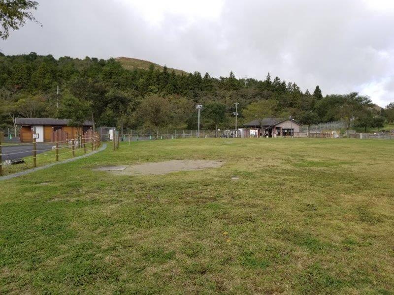 平尾台自然の郷キャンプ場 広場サイト