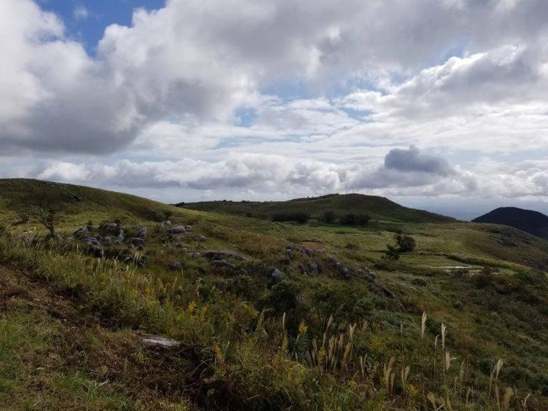 平尾台自然の郷キャンプ場 展望広場から見える景色