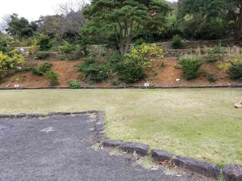 四本堂公園キャンプ場 オートサイト(4番サイト)