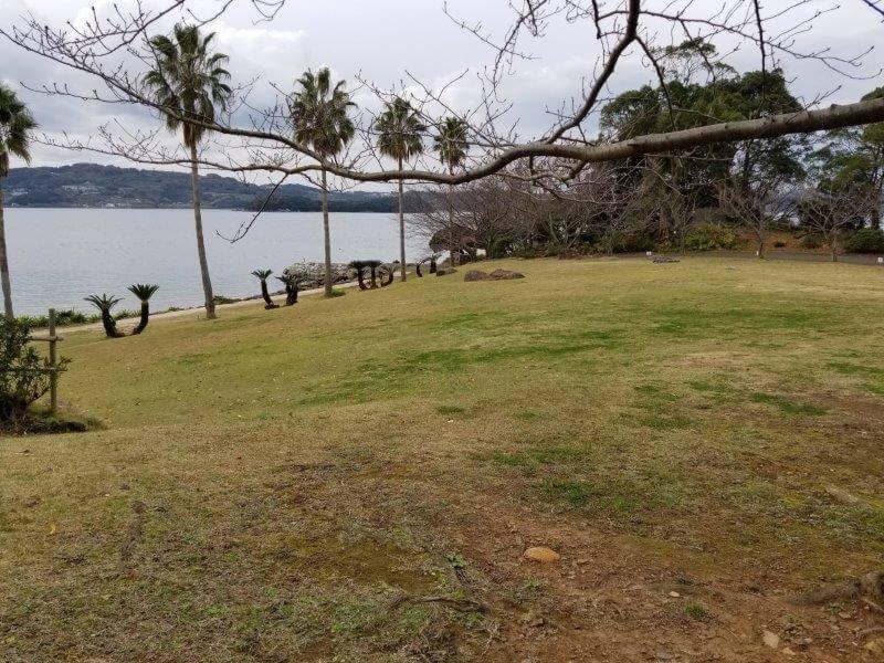四本堂公園キャンプ場 一般サイトの芝生エリア