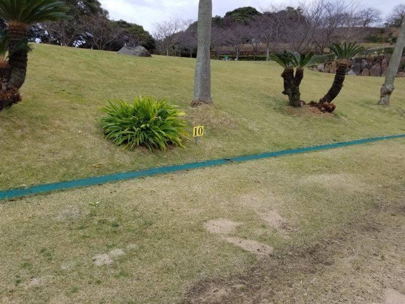 四本堂公園キャンプ場 一般サイト(10番サイト)