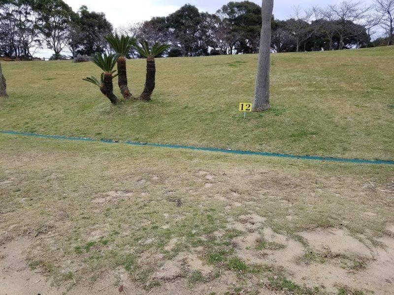 四本堂公園キャンプ場 一般サイト(12番サイト)